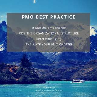 pmo-best-practice-pmo-pmo-charter-organizational-structure-pmo-size-wendy-kraly-regoprocess-rego-consulting.png