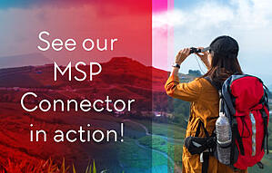 msp_blog-supporting